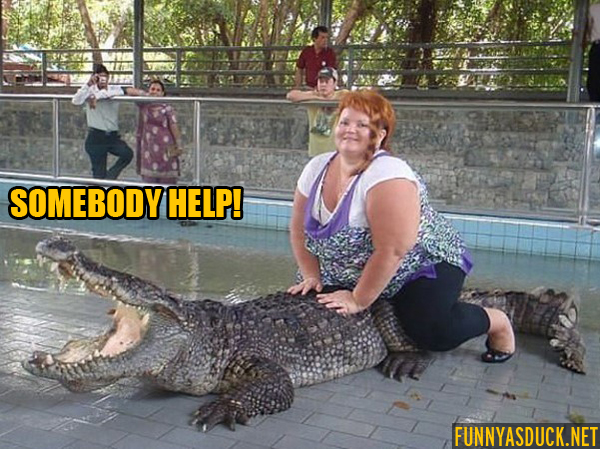 Poor Croc