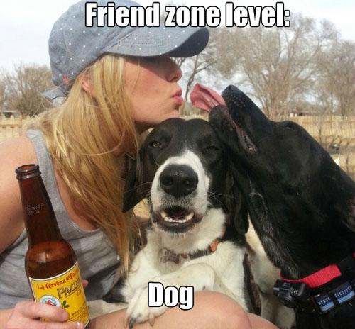 Dog Friendzone