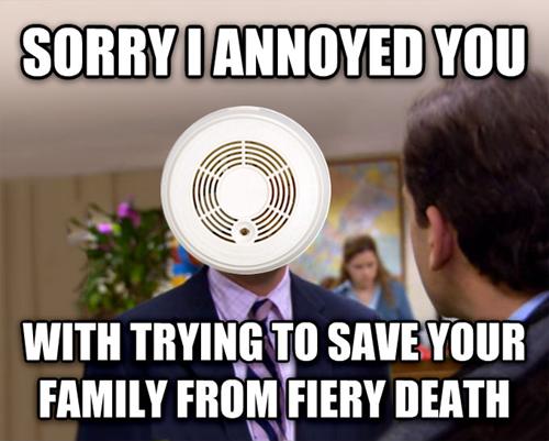 Sorry I Annoyed You