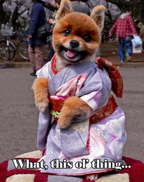 Lovely Kimono