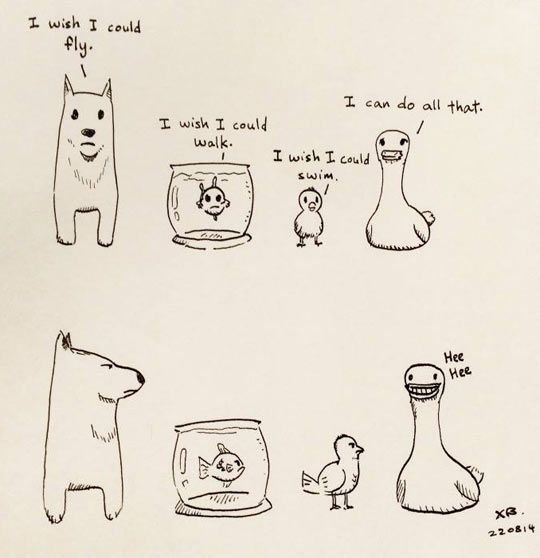 Being A Duck