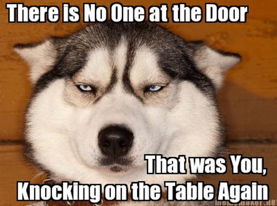 No One At The Door