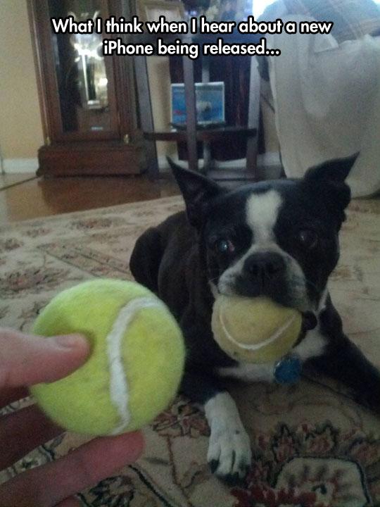 A New Ball?
