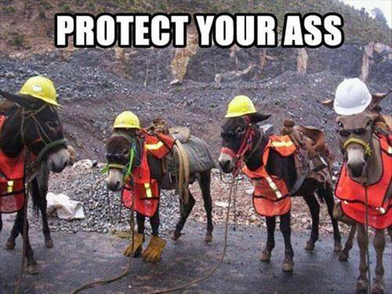 Protect Your Ass