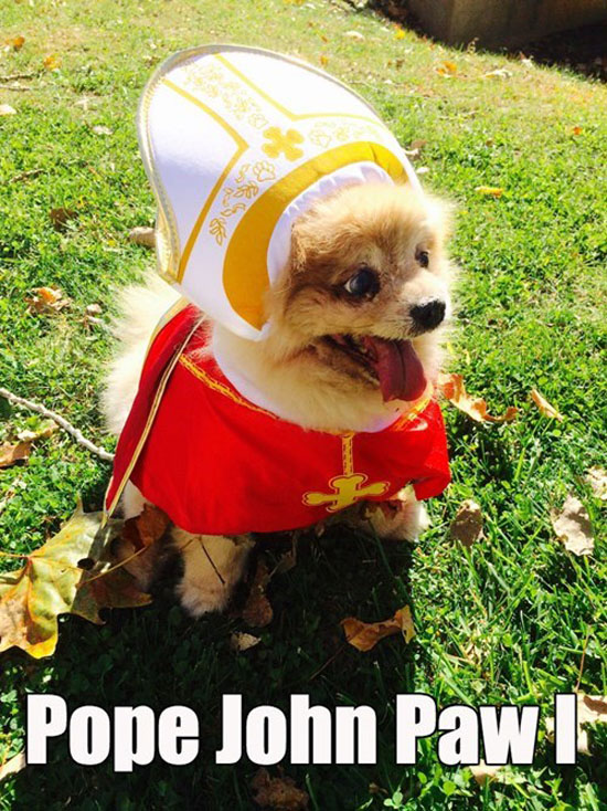 Pope John Paw I