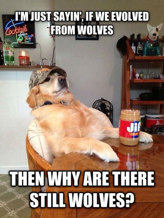 Redneck Dog