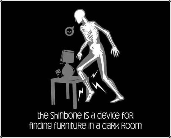 The Shinbone