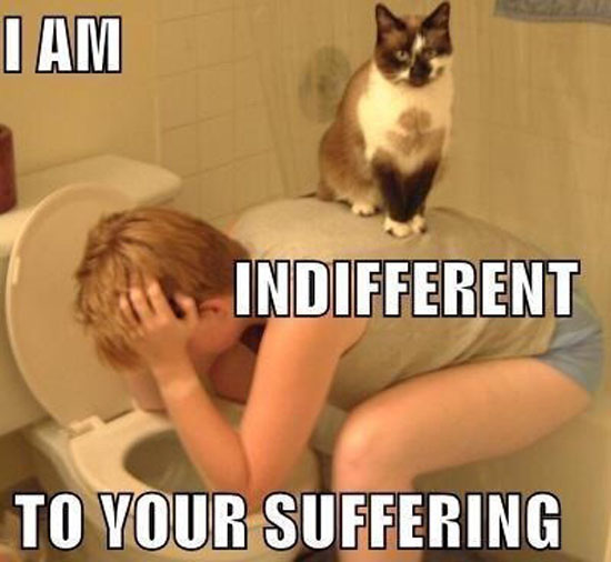 I Am Indifferent