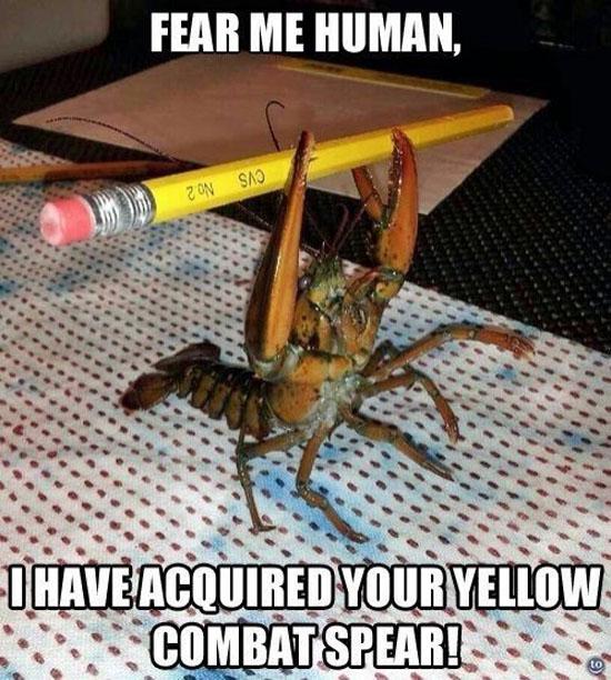 Fear Me Human