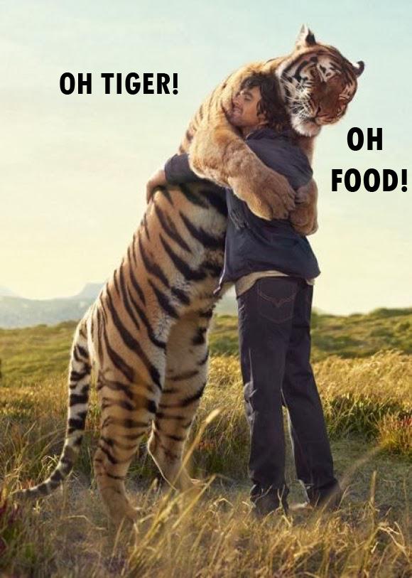 Oh Tiger!