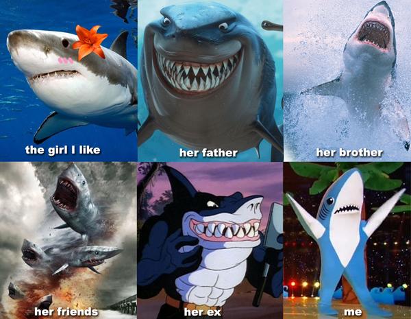 Shark Romance