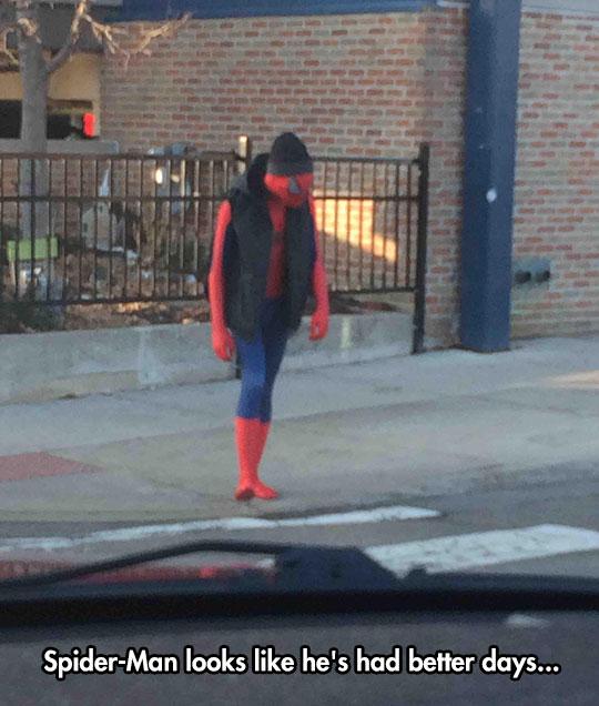 Spiderman Has Seen Better Days